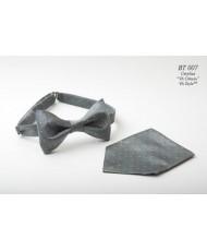 BT 007 Бабочка стальная с платочком